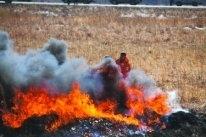 уголовные дела, пожары в Приморье, лесные пожары, статистика пожаров в 2017 году, Евгний Вишняков