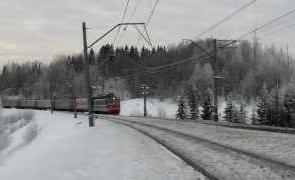 белоруссия, дети сбежали, бегство, дом, поезд во Владивосток, Приморье